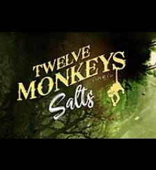 Twelve Monkeys - Nic Salts Range